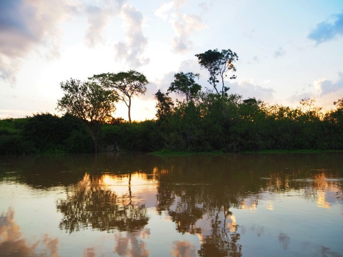 Sunset reflection, Pampas, Rurrenabaque, Bolivian Amazon